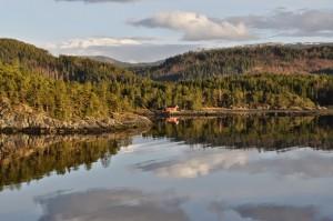 gestion durable forêt définition